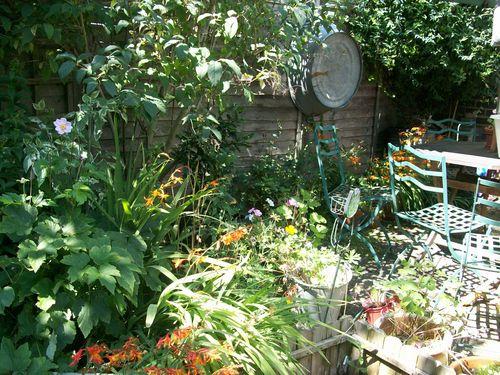 Sunny-back-patio