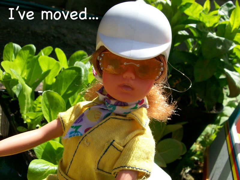 Movedpic